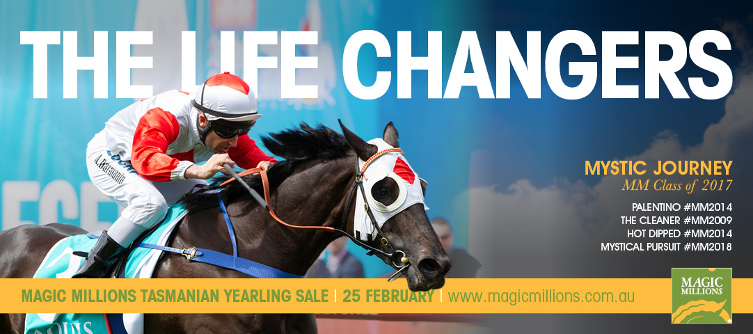 2019 Magic Millions Tasmania Sale