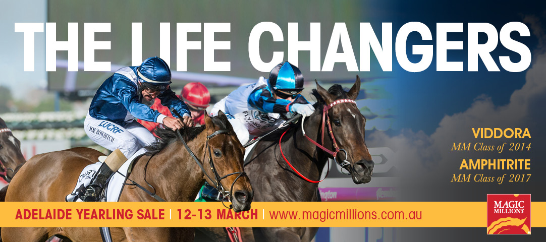 2019 Magic Millions Adelaide Sale