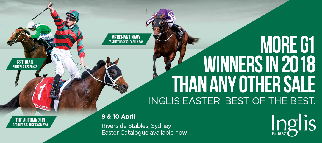 2019 Inglis Easter Yearling Feature