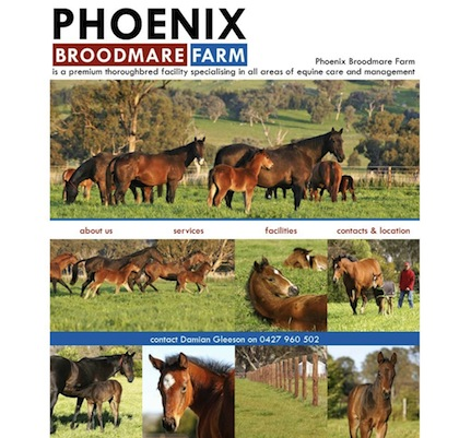 Phoenix Broodmare Farm