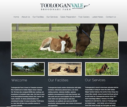 Toolooganvale Broodmare Farm