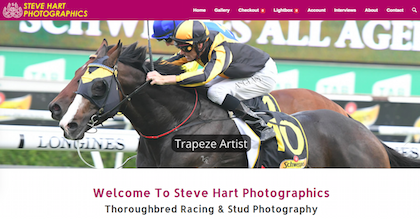 Steve Hart Photographics